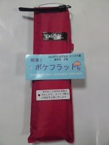 100110_1753~01.jpg
